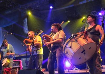 Les Sulfateurs Occitans au Carnaval Biarnes 2015 - Pau